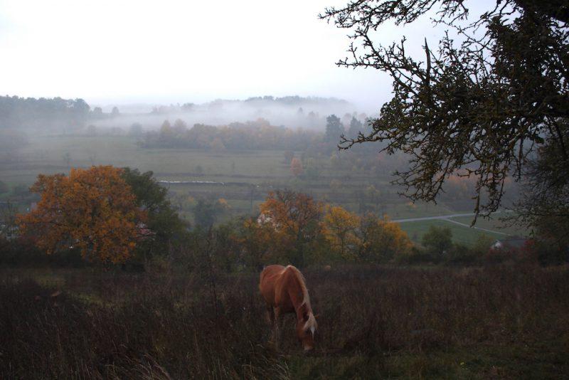 Herbstkoppel