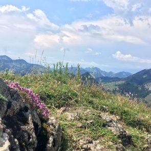 Rehleitenkopf Gipfel