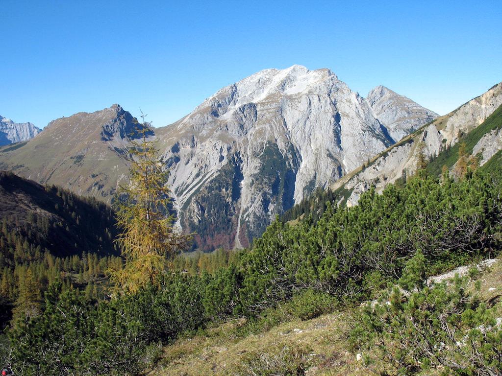Herbstlich gefärbte Lärche beim Aufstieg zur Lamsenjochhütte