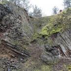 Basalte Lindenstumpf, Nahaufnahme