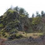 Basaltsäulen am Lindenstumpf