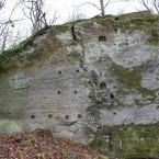 nordöstlicher Felsen mit Mauerresten, Blick auf zahlreiche Balkenlager