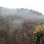 Ausblick von der Riesenburg