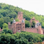 Burg Wertheim, Gesamtansicht vom Main aus