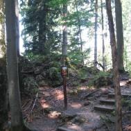 Kreuzweg zur Kapelle Riederstein