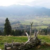 Blick auf Unterammergau