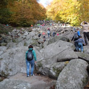 Reichenbacher Felsenmeer
