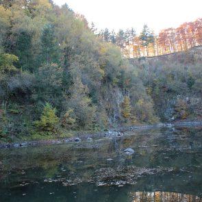 Steinbruchsee am Michelsberg