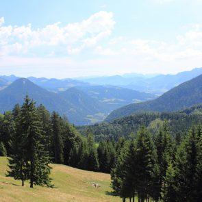 Rehleitenkopf, Aufstieg