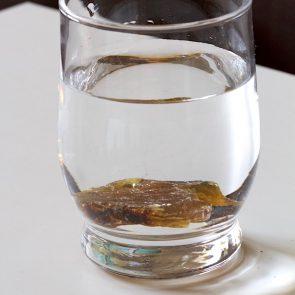 Bernstein Süßwasser