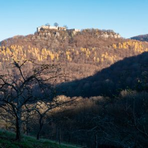 Das letzte Wegstück durch die Streuobstwiesen mit Blick auf die Burgruine Hohenurach