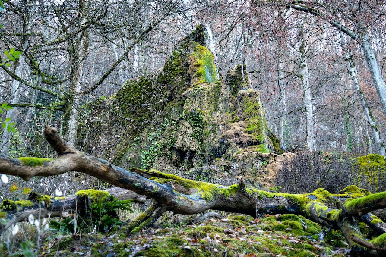 Wasserfallweg Bad Urach: Das farbenprächtige Ende der steinernen Rinne